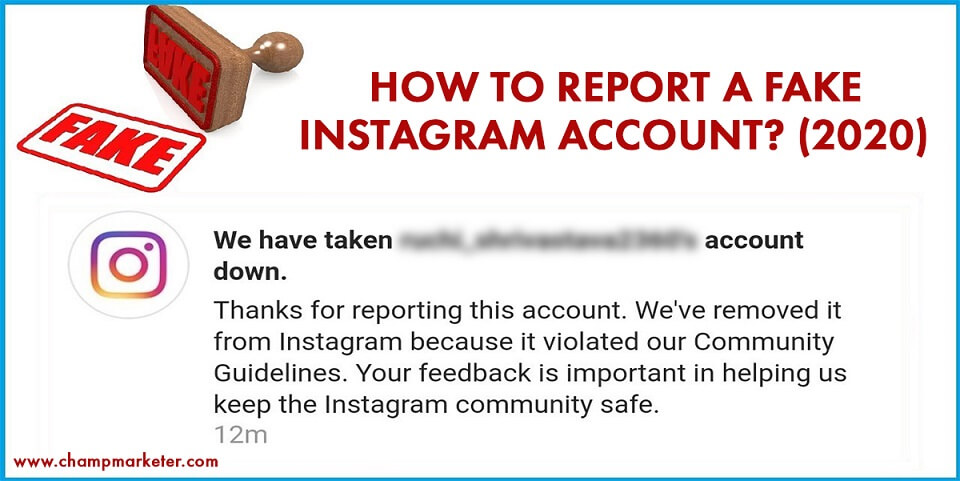 How to Report a Fake Instagram Account? (2020)